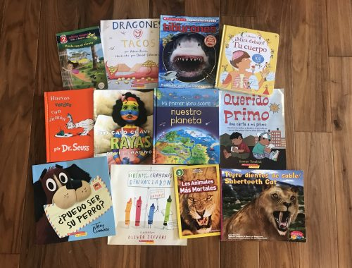 My 7 year old's favorite bilingual and Spanish picture books