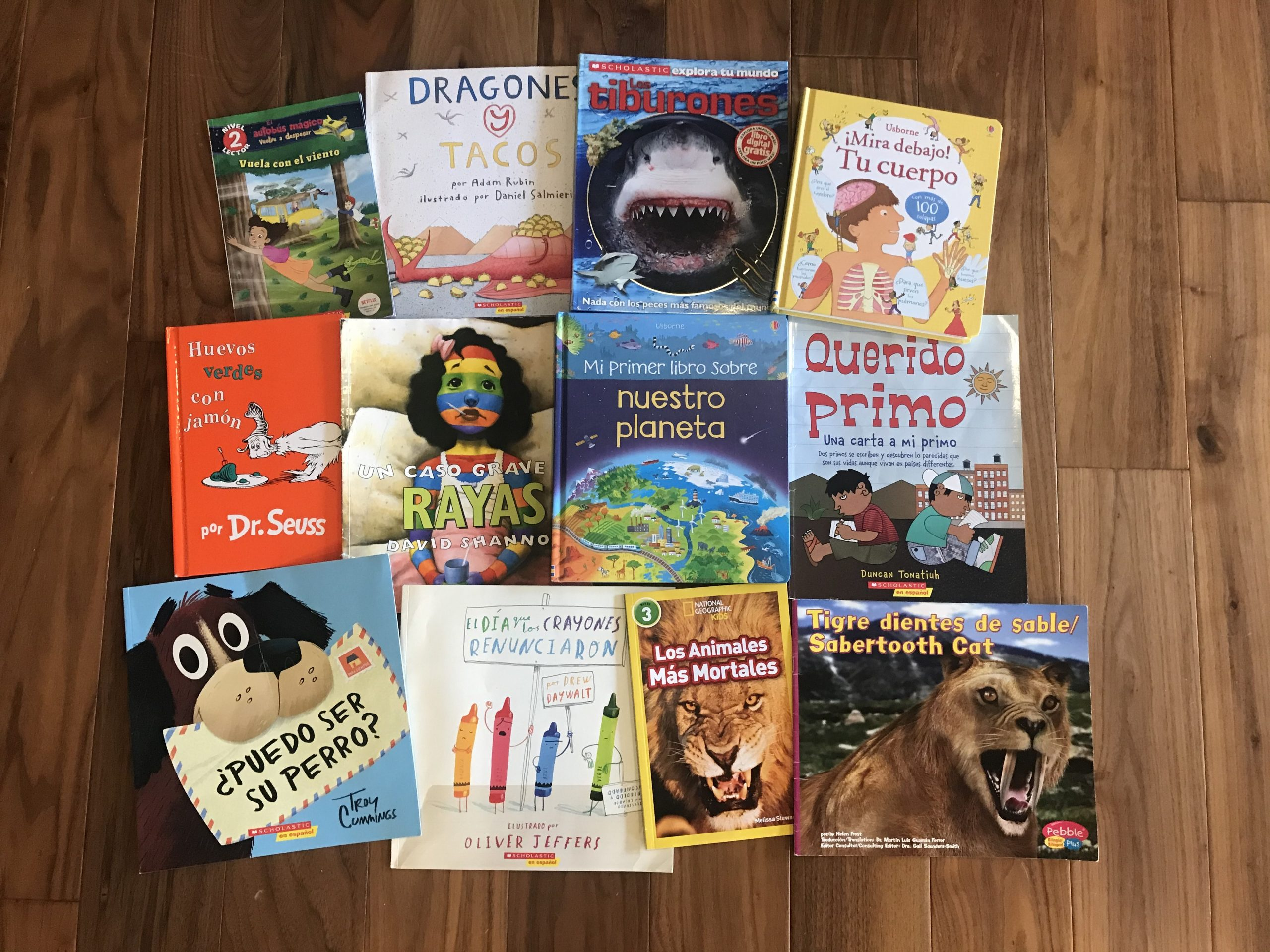 My 7-Year-Old's Favorite Spanish/Bilingual Books