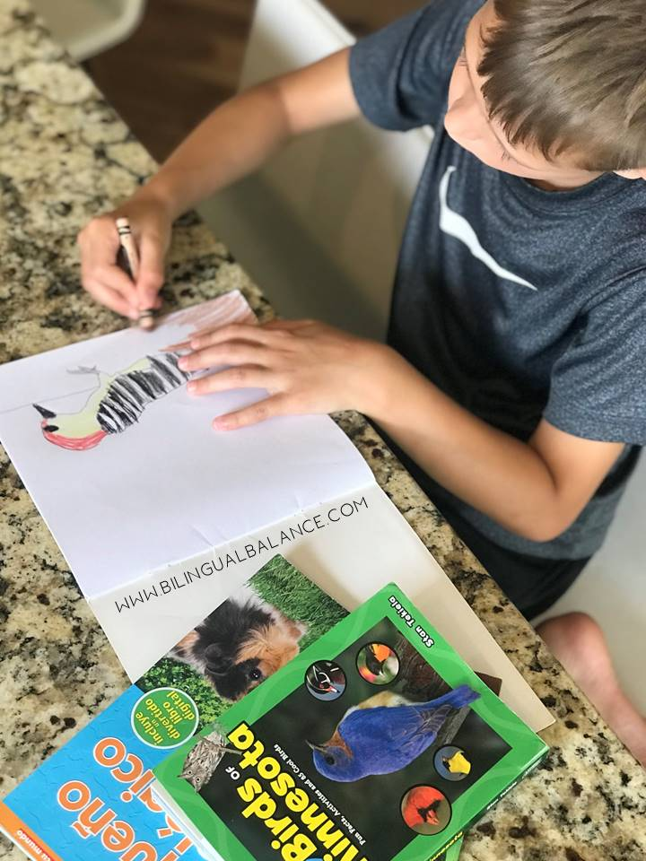 Fun nature and language learning activities for kids with FREE Spanish and English scavenger hunt printables.