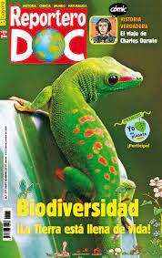 Repertero Doc Spanish language magazine for kids.